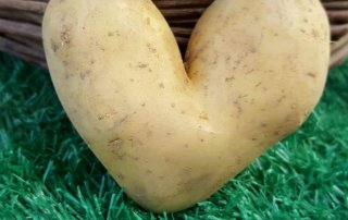 Muttertag, von Herzen, Kartoffel, Hofladen Haap